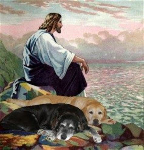 jesus in dogs the world s catalog of ideas