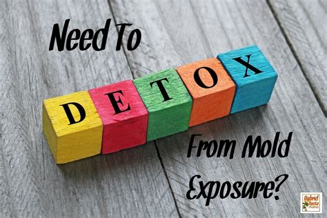 How To Detox From Mold by Need To Detox From Mold Exposure Here S How I Did It By