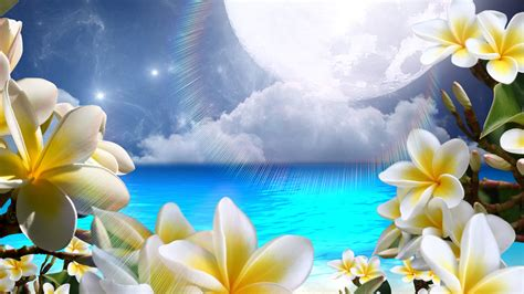 infinite tranquility download relaxation wallpapers relaxing beach wallpaper wallpapersafari