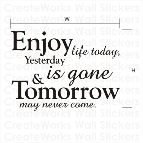 Design Wall Stickers enjoy life today wall quote sticker wa048x