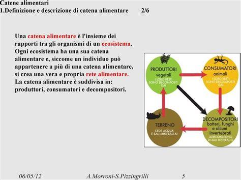 catena alimentare definizione l ecosistema catene alimentarireti alimentari pdf
