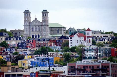 boat tours st john s nl experiencing the best of st john s newfoundland in 2 days