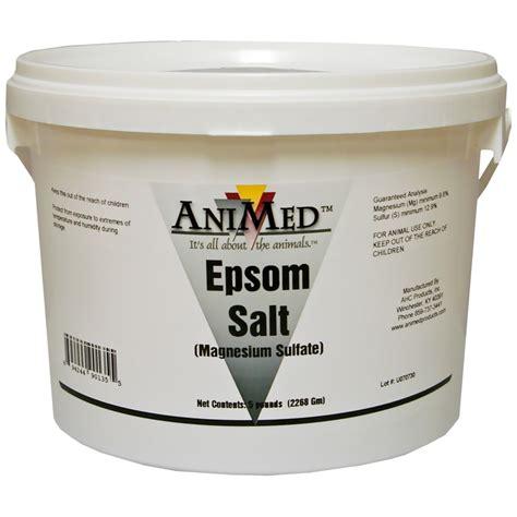 epsom salt for dogs animed epsom salt 5 lb
