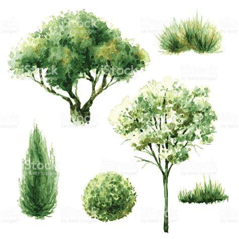 alberi clipart gruppo di verdi alberi e cespugli ricchi illustrazione