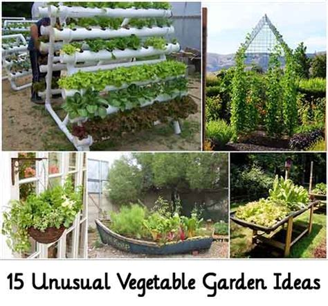 15 Unusual Vegetable Garden Ideas Lil Moo Creations Wacky Garden Ideas