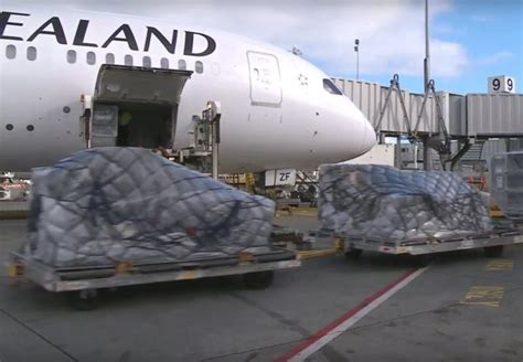 nz tech disrupts air cargo industry callaghan innovation