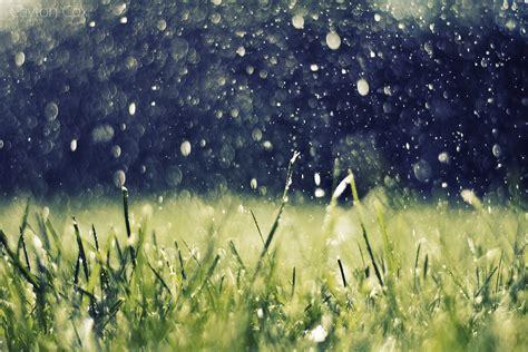 Rainy Summer by Summer Imgurm