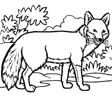 fox coloring book fox coloring page coloringcrew