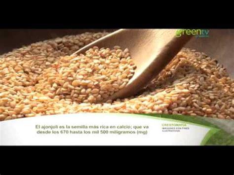 ajonjoli el alimento saludable de la semana pgm   youtube