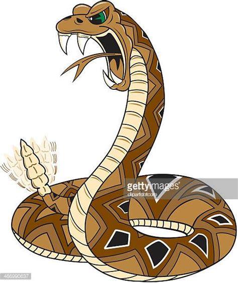 rattlesnake clipart rattlesnake stock illustrations and getty images