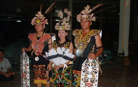 Baju Adat Orang Dayak 7 pakaian adat kalimantan timur suku dayak dan kutai beserta penjelasannya adat tradisional