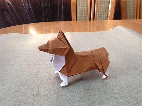 Written Origami - 186 best images about origami animals on
