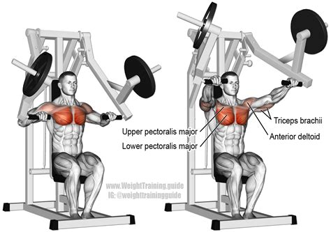 does decline bench press work machine chest press exercise instructions and video