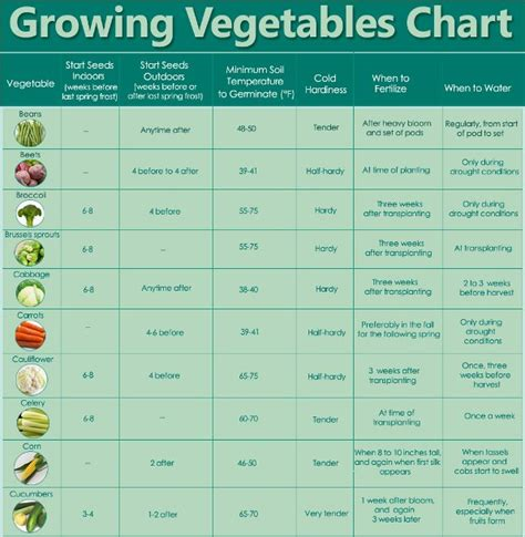 Garden Chart | guidelines for growing vegetables chart