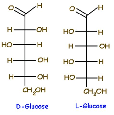 carbohydrates l g d glucose www pixshark images galleries with a bite