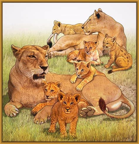 imagenes leones en caricatura imagenes de leones en caricatura archivos imagenes de leones
