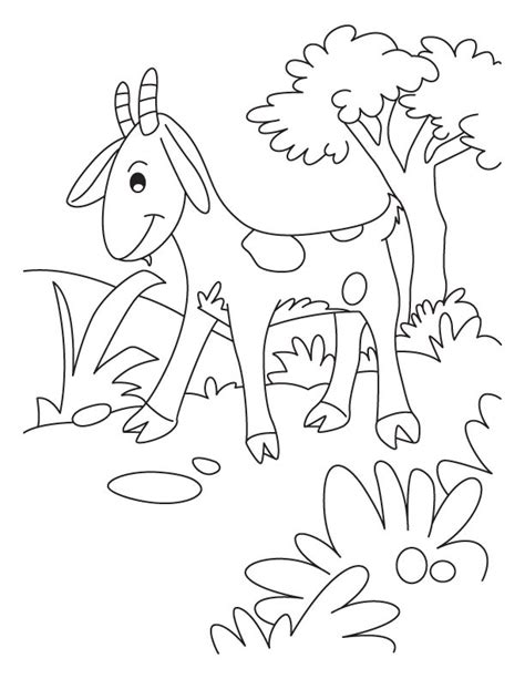 cute goat coloring pages free cute goat coloring pages