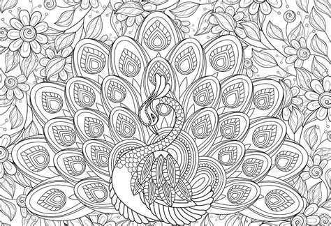 majestic feathers color  puzzles  eurographics