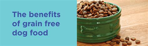 grain free food benefits grain free food is it really better for my here s the