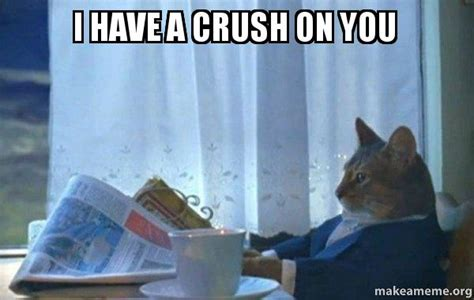 I Have A Crush On You Meme - i have a crush on you sophisticated cat make a meme