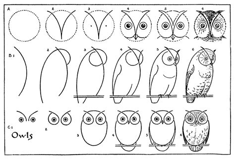 how to draw doodle owl 1000 images about owl design on great horned