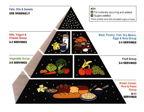 Low Calorie Main Dishes - rest in peace food pyramid the word of ashley tips and facts about living healthy