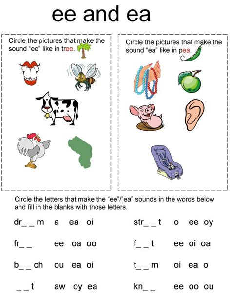 Vowel Team Worksheets by Vowel Digraphs School Education