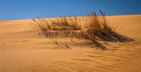 back on sands of time sands of time photograph by joye ardyn durham