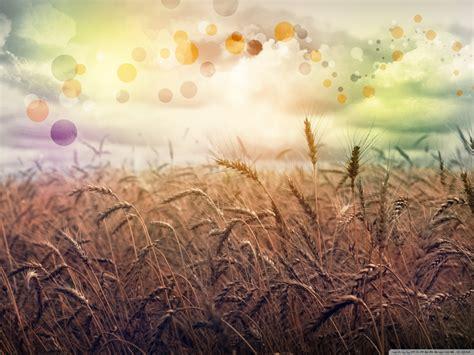 rainbow country  hd desktop wallpaper   ultra hd tv