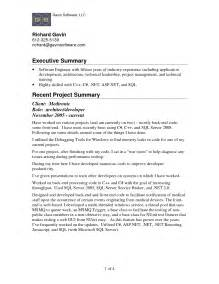 Resume Executive Summary Exle by Executive Summary Resume Exle Berathen