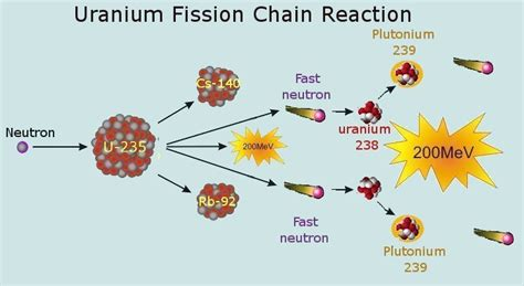 nuclear fission diagram gallery for gt nuclear fission diagram