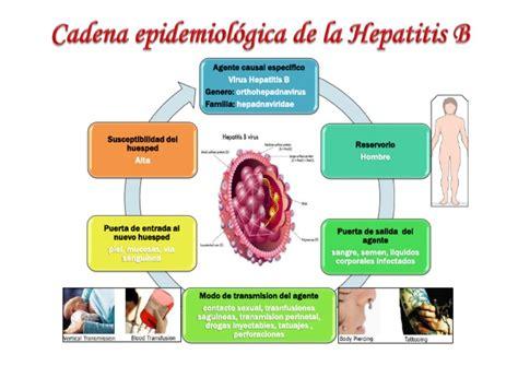 cadena epidemiologica vias de transmision cadena epidemiologica de hepatitis b