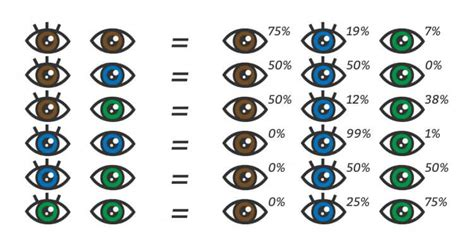 eye color chart what color will my baby