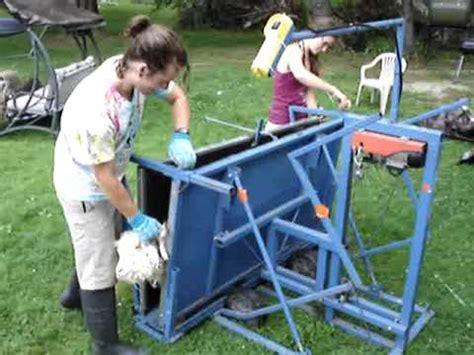 sheep shearing table plans tilt table