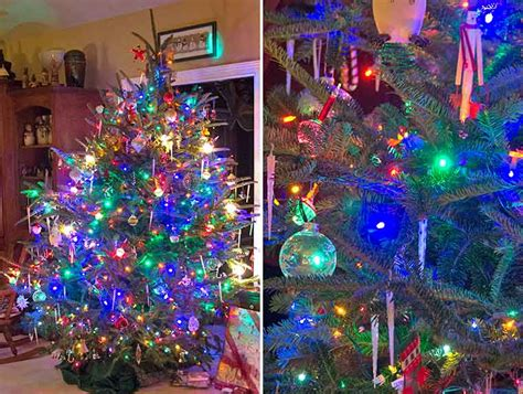 blue and green xmas lights primary colors a naturalist s journal