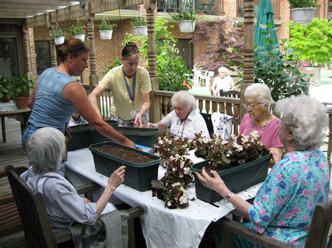 Raised Gardens Ideas by Horticultural Therapy Week Design For Generations