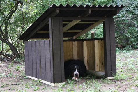 dog house show how to build a modern dog house how tos diy