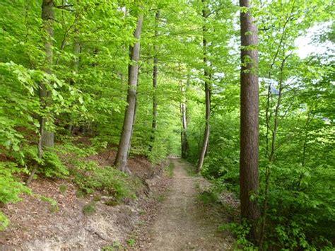 haus freund schmitten schmitten forest walk