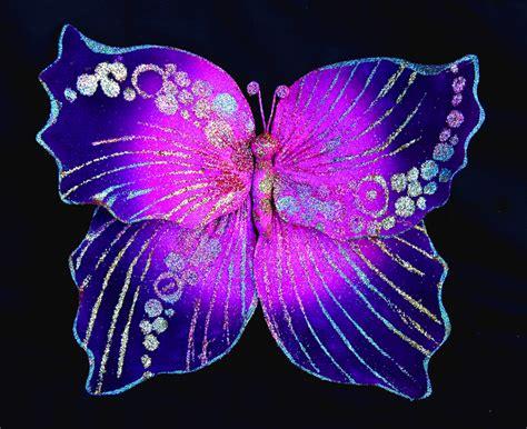 foto farfalle e fiori fiori e farfalle creazioni liani