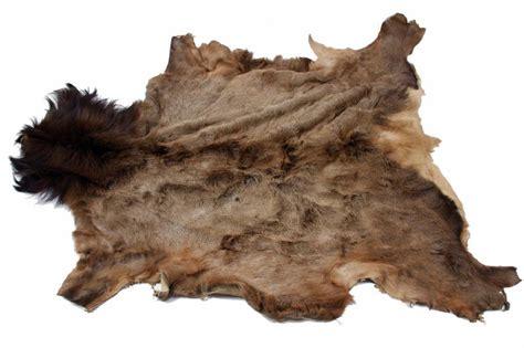 elk hide rug elk hide rug rugs ideas