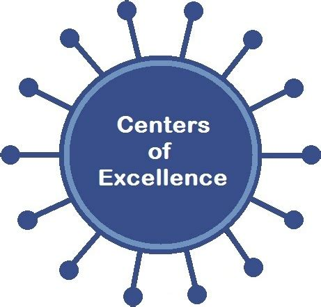 center of excellent centers of excellence area agency on aging