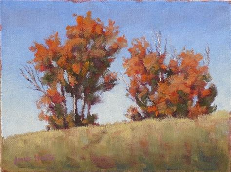 file autumn rocky mountain maple gunter s studio some fall color and a snake
