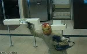 dogs robbing bank dressed as iron robs bank daily mail