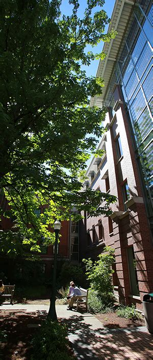 Melbourne Business School Mba Placements by About The Phd Program Lundquist College Of Business