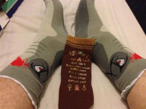 reddit sock aid what s more awesome than shark socks korean sexual health