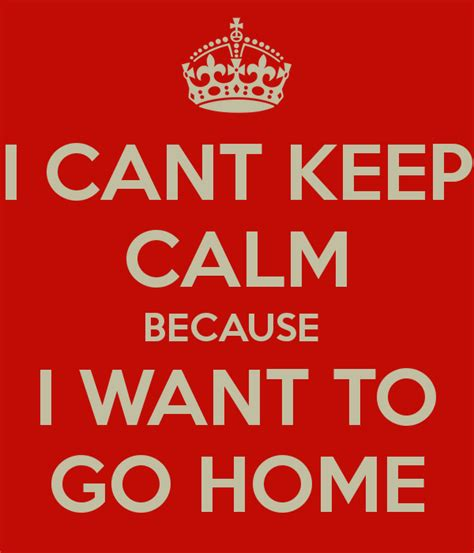 i cant keep calm because i want to go home poster ananya