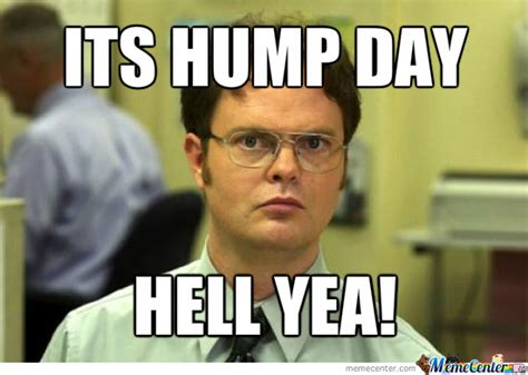 Hump Day Meme Dirty - 37 happy hump day meme graphics gifs pictures picsmine
