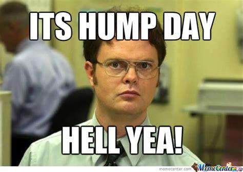 Meme Hump Day - 37 happy hump day meme graphics gifs pictures picsmine