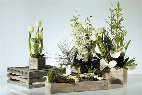 Woodland Planter by Whitewashed Woodland Fir Planter Box For Centerpieces