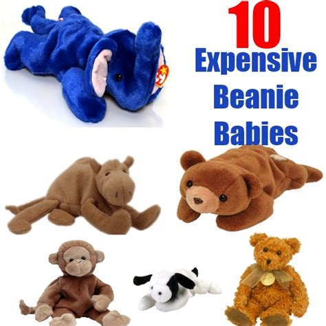 10 most valuable beanie babies 10 most expensive beanie babies in the world diy top